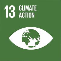 E_SDG-goals_Goal-13